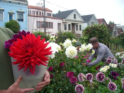photo of community gardeners with flowers